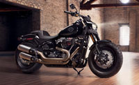 /i/images/Parts/PA18_M8Softail.jpg
