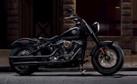 /i/images/Parts/PA18_TwinCamSoftail.jpg
